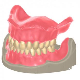 Модуль Exocad Full Dentures