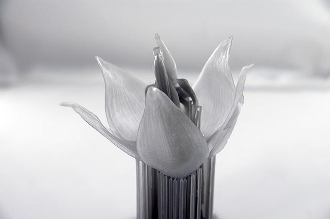 Пример печати FormLabs Grey resin